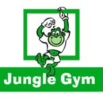 Комплексы «Jungle Gym»