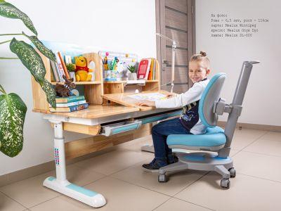 Детская парта Mealux Premium Winnipeg Wood