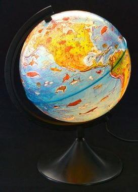 Глобус Земли зоогеографический с подсветкой 210 мм Классик