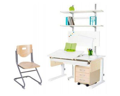 Комплект Астек Парта ЛИДЕР с выдвижным органайзером, тумбой и стеллажом со стулом SK-2 и прозрачной накладкой на парту 65х45