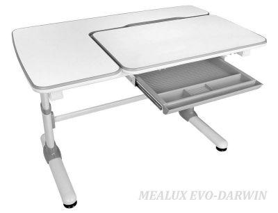 Комплект Mealux Парта Darwin с креслом Nobel и прозрачной накладкой на парту 65х45