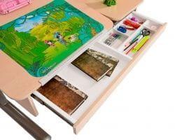 Парта для школьника для дома МОНО-2 с органайзером