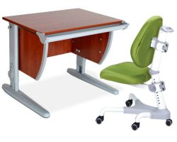 Комплект ДЭМИ Парта СУТ-13 60х50 см с креслом Champion и прозрачной накладкой на парту 65х45
