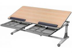 Комплект Comf-pro Стол для двоих детей Twins с креслом Match Chair (Матч) и прозрачной накладкой на парту 65х45